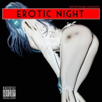 Erotic Night: Real Hot Lounge Sensations (2010)