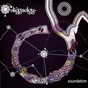 Diggadgy - Soundation (2010)