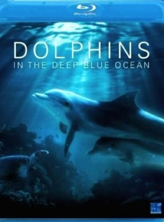 �������� � �������� ����� ������ / Dolphins in the deep blue ocean (2009) BDRip