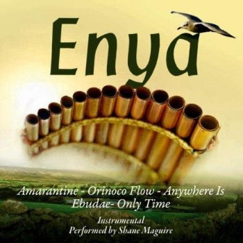 Maguire Shane - The very Best of ENYA on Panpipes (2011)