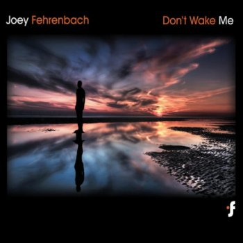 Joey Fehrenbach - Don't Wake Me (2010)