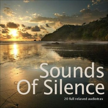 Sounds of Silence  (2013)