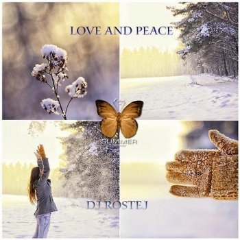 DJ Rostej - Love And Peace (2013)