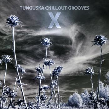 Tunguska Chillout Grooves 10 (2013)