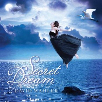 David Wahler - Secret Dream (2012)