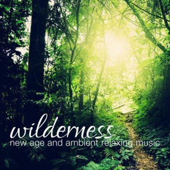Wilderness New Age and Ambient Relaxing Music (2013)