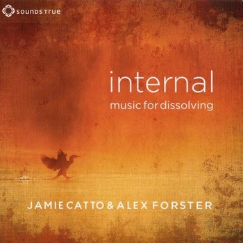 Jamie Catto & Alex Forster - Internal - Music For Dissolving (2013)