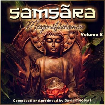 David Thomas - Samsara 'Magnificience', Vol. 8 (2014)