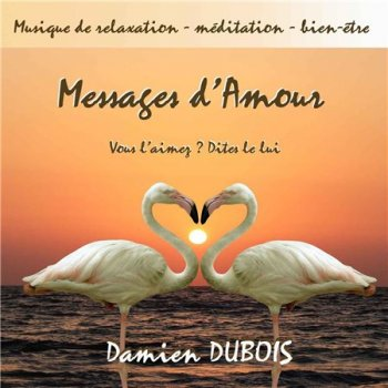Damien Dubois - Messages d'amour (2013)