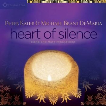 Peter Kater & Michael Brant DeMaria - Heart of Silence (2015)