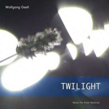 Wolfgang Gsell - Twilight (2015)