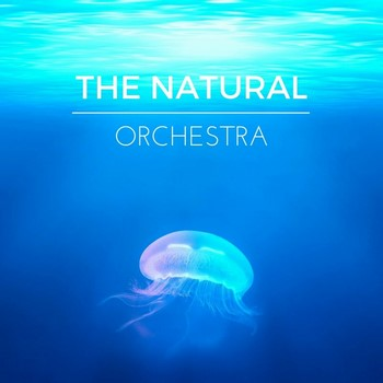 Nature Sounds & Yoga Tribe - The Natural Orchestra (2016)