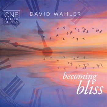 David Wahler - Becoming Bliss: One Hour Series (2016)