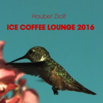 Hauber Zsolt - Ice Coffee Lounge 2016 (2016)