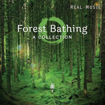 Forest Bathing (2016)