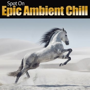 Spot On: Epic Ambient Chill (2017)