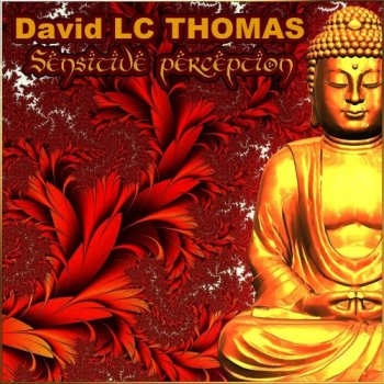 David LC THOMAS - Sensitive Perception (2019)