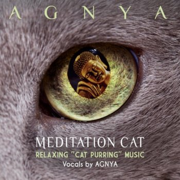 Agnya - Meditation Cat (Relaxing Cat Purring Music) (2019)