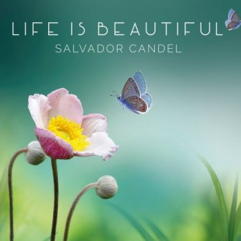Salvador Candel - Life is Beautiful (2019)