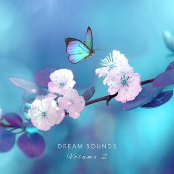 Dream Sounds - Dream Sounds, Vol. 2 (2019)