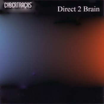 Direct 2 Brain (Riccardo Ricci) - Best Cybertracks (2009)