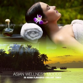 Asian Wellness Moods: 20 Asian Flavoured Chillout Tunes (2011)