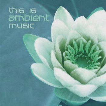 This Is Ambient Music (2011)
