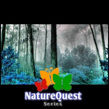 NatureQuest - Series (1993-1998)