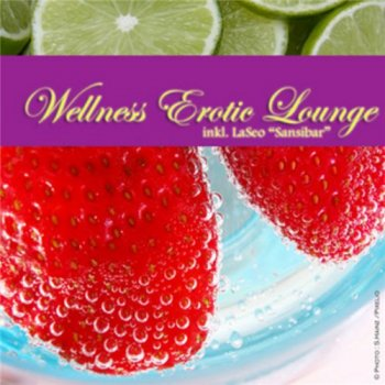 Wellness Erotic Lounge (2010)