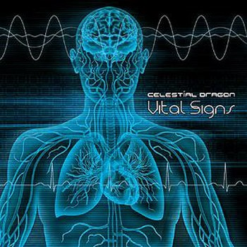 Vital Signs (Compiled By Androcell) (2010)